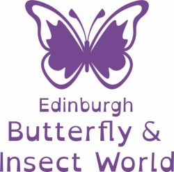 T_\Development Office\Read Write\Merchistonian Club\Affinity Discount Scheme\Edinburgh Butterfly & Insect World\EBIW Portrait.JPG